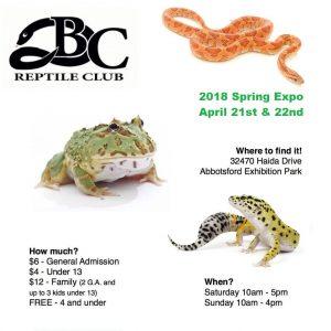 Spring Reptile Club Expo