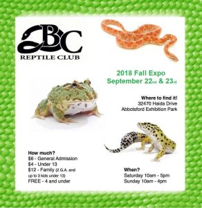 BC Reptile Club Fall 2018 Show