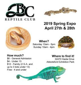 BC Reptile Club Expo spring 2019